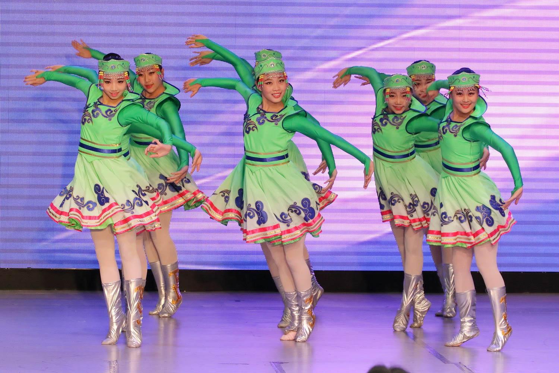 2016 Overseas Taoli Cup World Dance Final Competition (157)
