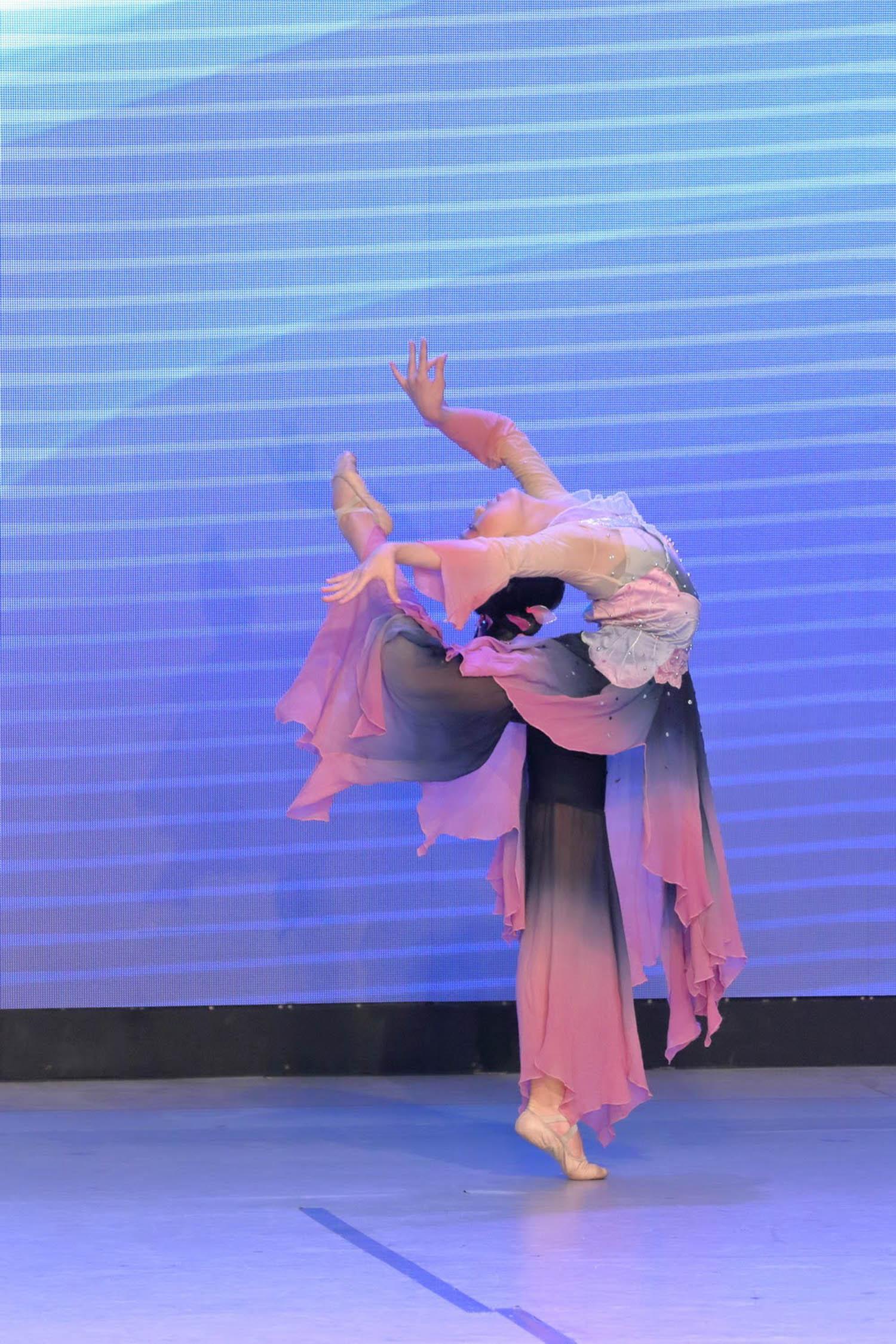 2016 Overseas Taoli Cup World Dance Final Competition (49)