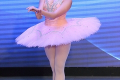 2016 Overseas Taoli Cup World Dance Final Competition (18)