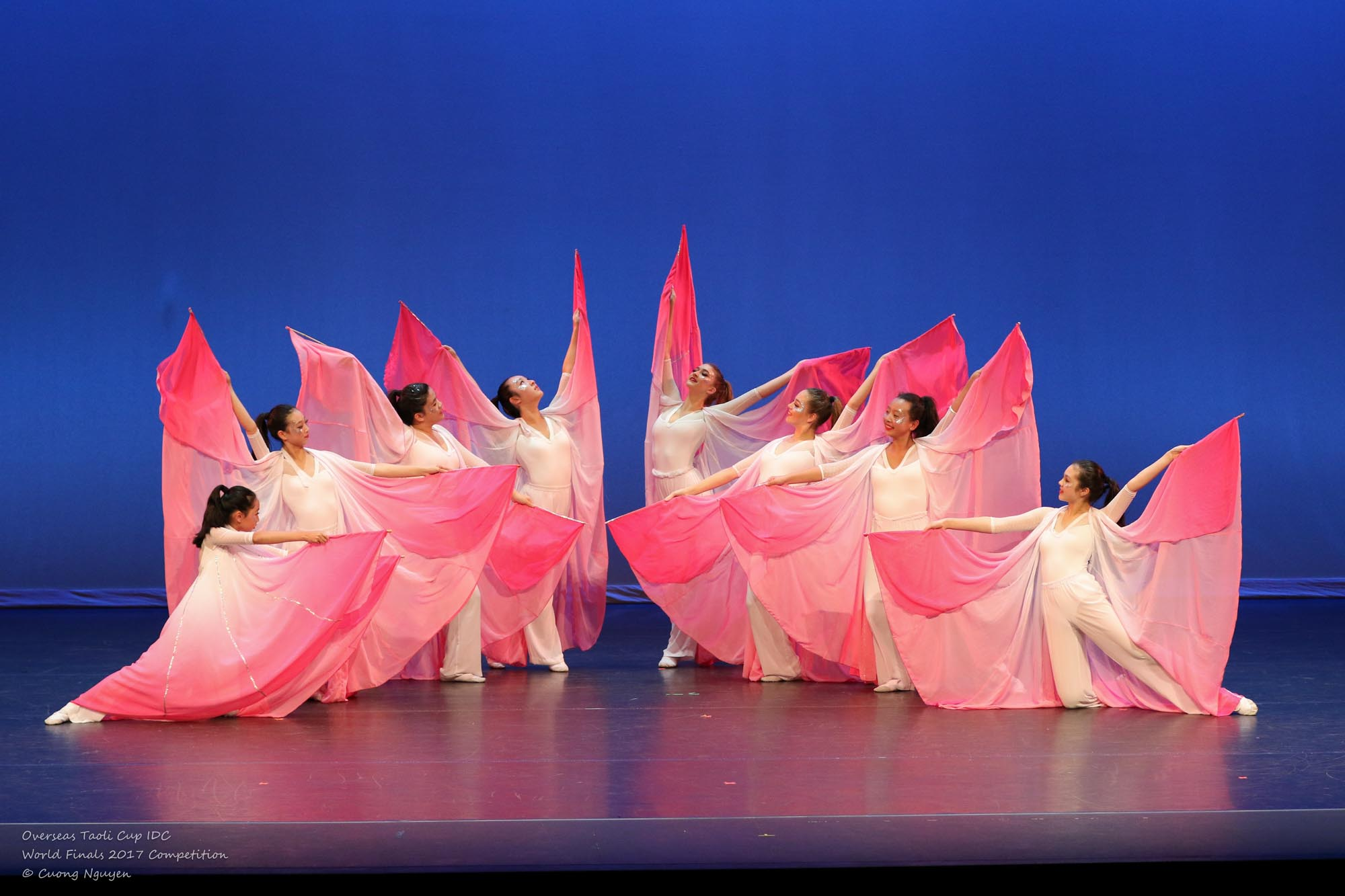 Love of ButterflyJun Lu Performing Arts Academy
