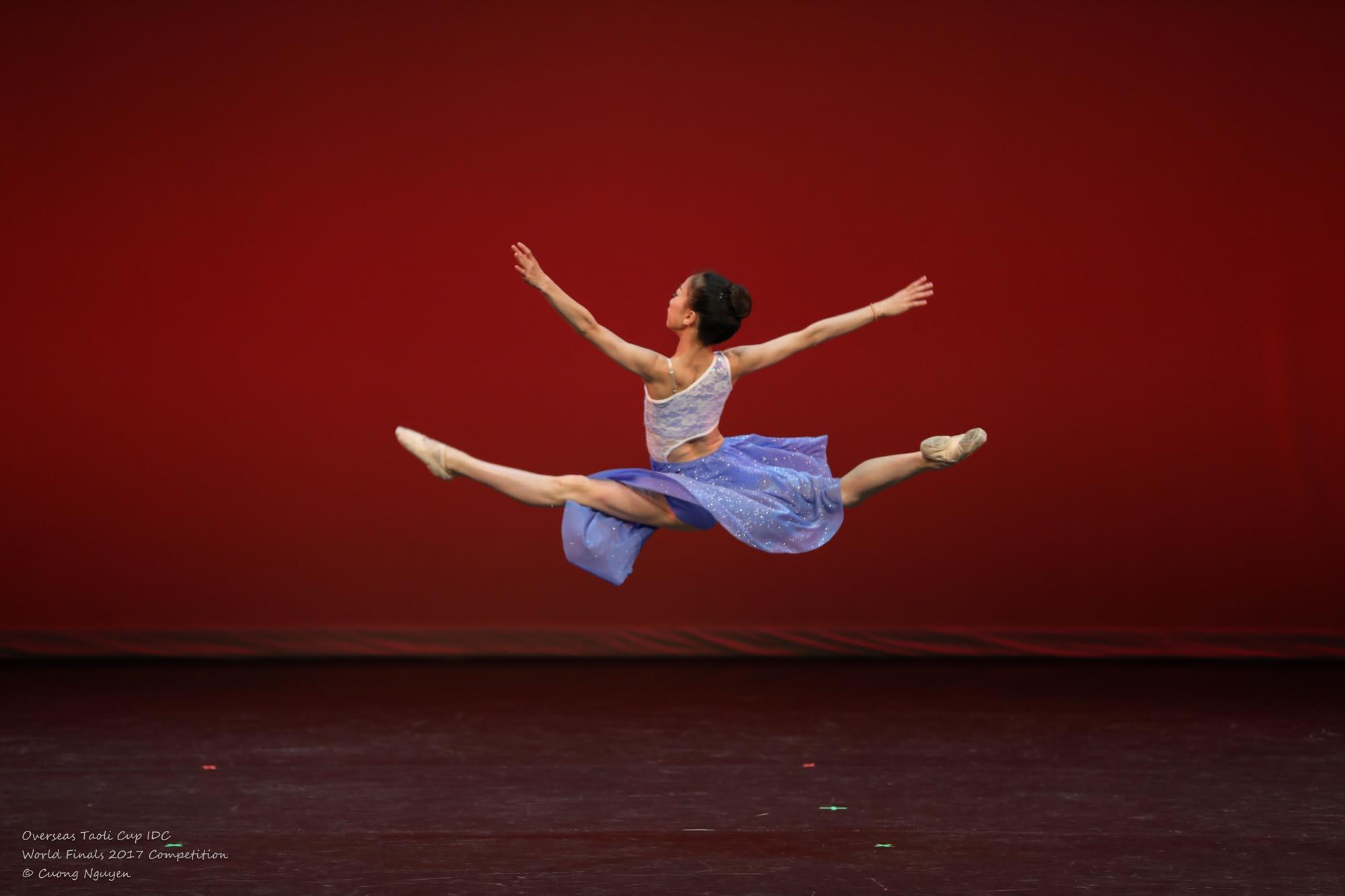 Chasing the Dream Jenna Zhao