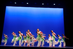 2017 Overseas Taoli Cup World Dance Final Competition (14)