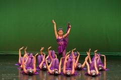 Purple Fish Jun Lu Performing Arts Academy