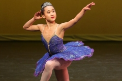 Bluebird Variation - Sleeping Beauty Sylvia Xi