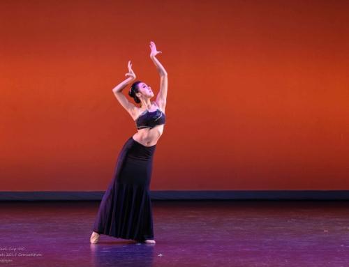 2017年度海外桃李盃國際舞蹈大賽比赛结果